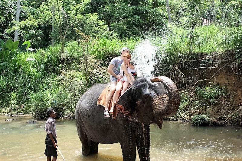 elephant-back-at-yala