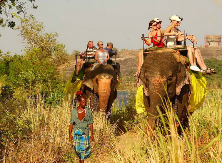 elephint ride1