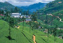 Nuwara Eliya Road