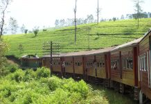 railway track Colombo to Badulla is one of the most beautiful railway tracks in Sri Lanka