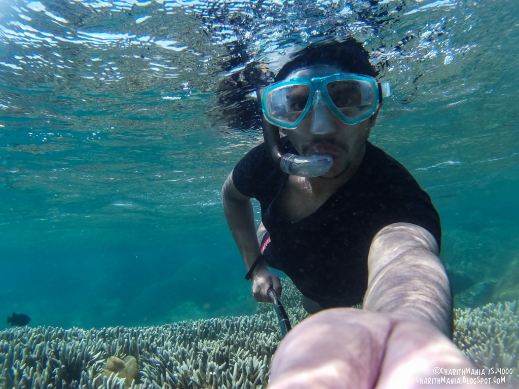 Snorkeling Sri Lanka photo