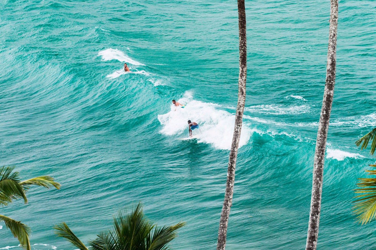 Picture of Surfing in Sri Lanka